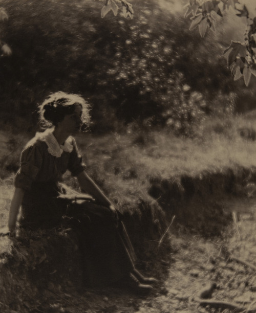 littlepennydreadful:  Louis Fleckenstein, Play of Light, Los Angeles, 1912