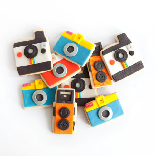 xponury:  camera-shaped cookies
