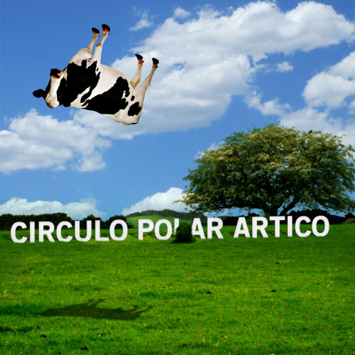 Circulo Polar Artico - [Untitled] (Rejected)
