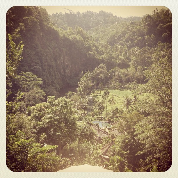 #bali #green #mountain fancy as hotel lobby overlooked this. (Taken with Instagram)