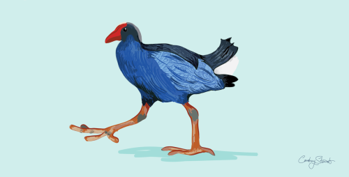New Zealand Pukeko. Pattern by William Morris.