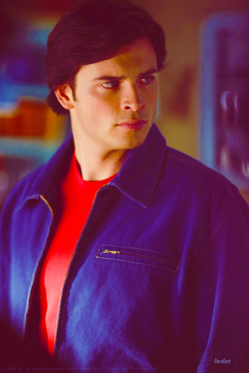 alexakent:  100 Photos / Gif  -  Tom welling⇁ [69/100]