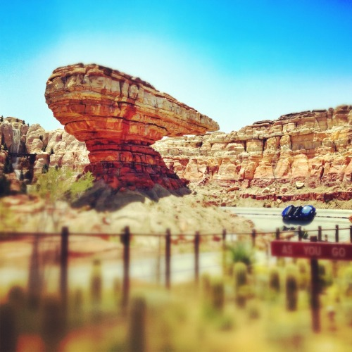 Cars Land is officially OPEN!