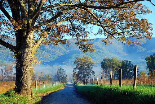 Cade's Cove, Tennessee