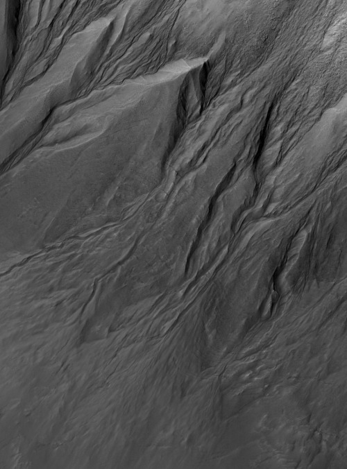 "ageofdestruction:  because the rain: The surface of Mars, photographed by Mars Reconnaissance Orbiter, 10th April 2007. ""Fresh gullies in massif wall"". Detail of a larger image [PSP_003302_1330_RED]. Image credit: NASA/JPL/UoA."