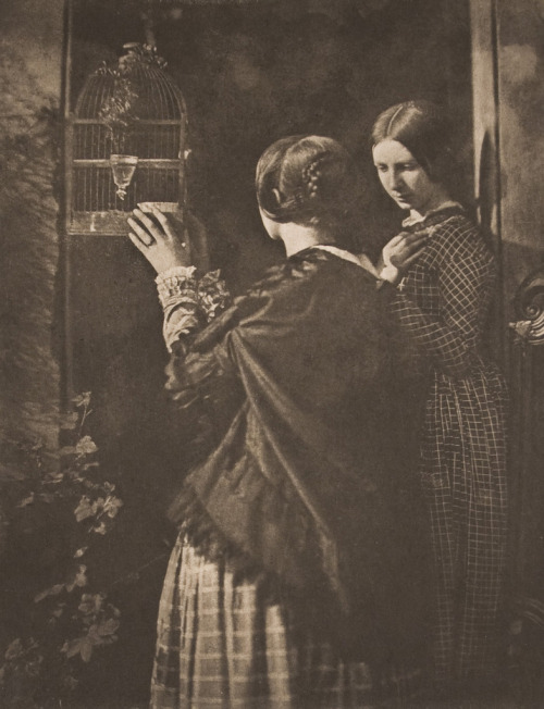 David Octavius Hill and Robert Adamson, The Bird Cage, 1845 photogravure