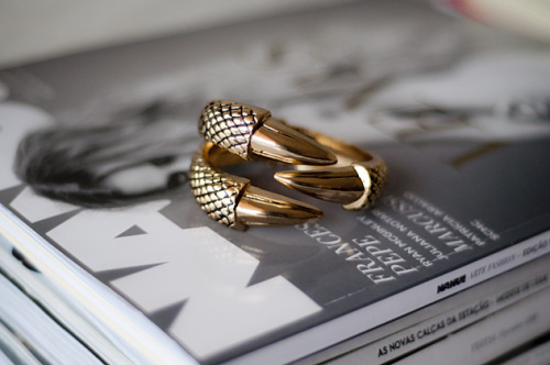 evanescen-t:  want a ring or bracelet like this so much