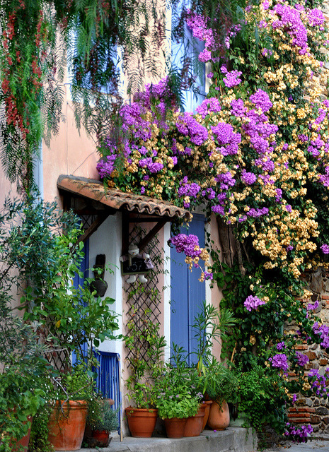 Floral Entry, Grimaund, Provence, France photo via besttravelphotos