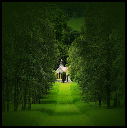 bluepueblo:   Summer Green, Botanical Gardens, Peebles, Scotland photo by gradamso