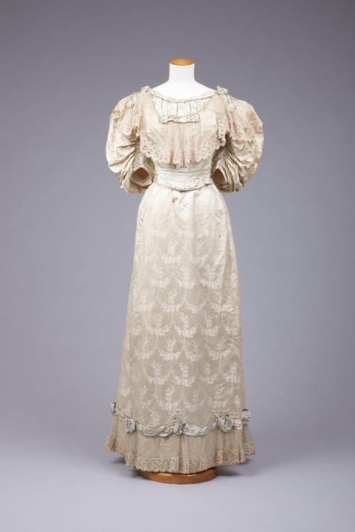 Dress 1895-1899 The Goldstein Museum of Design
