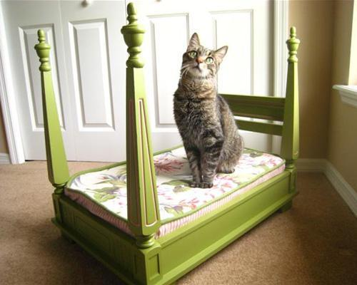 mothernaturenetwork:  10 enviable upcycled pet beds  Cant wait to look for a couple of old tv's to hollow out!! Any idea what I should do with the guts? Electronic recycling in Houston? Selling the parts?
