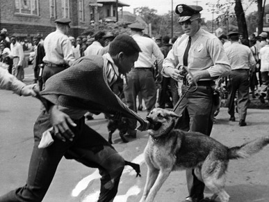 A protester being attacked during a march in Birmingham, Alabama.