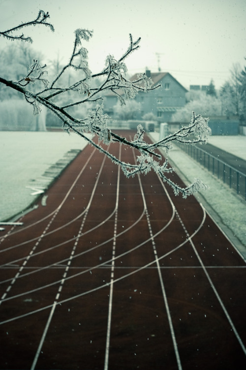 sw-speaks:  Winter-training. Gotta love it.  :)