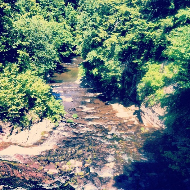 Went on a hike today!  (Taken with Instagram)