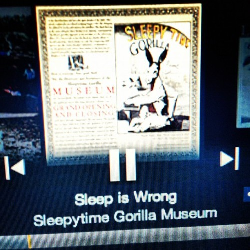 #epic #essential #song. #the #sleepytime #gorilla #museum  (Taken with Instagram)