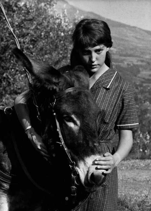 strangewood:  Au hasard Balthazar // dir. Robert Bresson  Tilda Swinton:The only film that I've ever seen that's made me want to be an actress is a film by Robert Bresson called Au hasard Balthazar about a donkey. What was so inspiring? Tilda Swinton:It's the greatest performance you've ever seen. The donkey? Tilda Swinton:Absolutely. It does no acting and that's got to be a good performance.