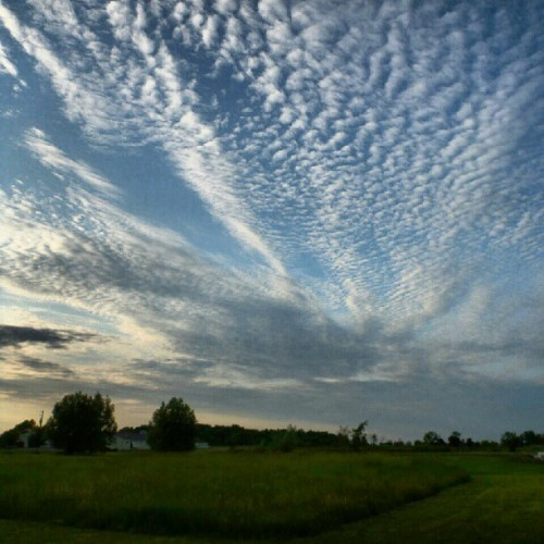 #sky #clouds #trees #barn #grass #field  (Taken with Instagram)
