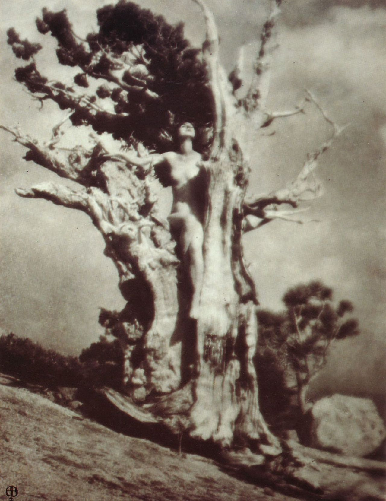 Anne W. Brigman Invictus, 1925 From Pictorialism into Modernism: The Clarence H. White School of Photography