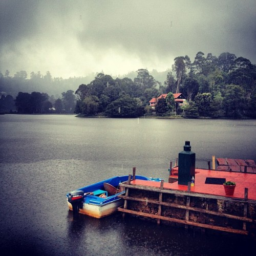 Ten thousand drops and more. #kodaikanal #travel #india #instaoftheday #instagrammers #photooftheday #picoftheday #rains (Taken with Instagram)