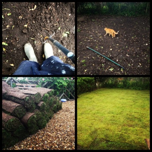 Laying turf in the pouring rain #manstuff #manwork #garden #grass #rain #june #instagram #ig #iphone #iphoneonly  (Taken with Instagram)