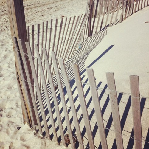 katespadeny:  don't walk into the dunes. (Taken with Instagram)
