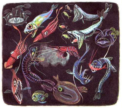 "jumbledplanet:  From ""The Deep Blue Sea,"" by Bertha Morris Parker and Kathleen N. Daly, Illustrated by Tibor Gergely. Little Golden Books, Simon and Schuster, 1958.  From the personal collection of Jumbled Planet."