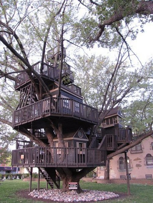 theewhitetiger:  villere:  Tree house via  for a Dream Forting friend!  Let's go drink pints of Pan Galactic Gargle Blasters in the tumblr/zombie apocalypse Dream Fort,  watch Tom Hardy movies, giggle about horny goat weed tea, play the game of LOIN, eat waffles…  and wait for this to all blow over  really when you have a good dream fort and good company the options are unlimited.