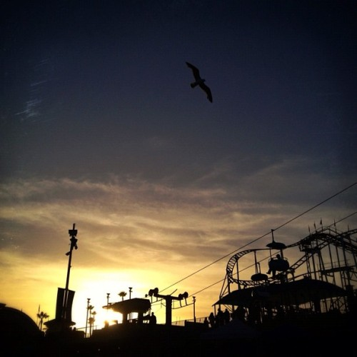 167/365:  Santa Cruz Beach Boardwalk. (Taken with Instagram at Santa Cruz Beach Boardwalk)