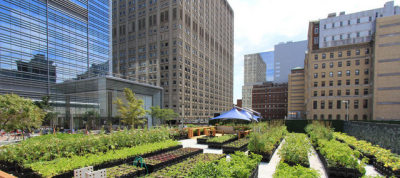 Green Roofs, Blue Roofs and More Roofs in NYC http://bit.ly/LSYVnF