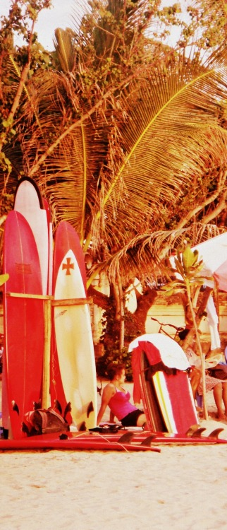 vanillaandwatermelons:  surf boards, Bali beach