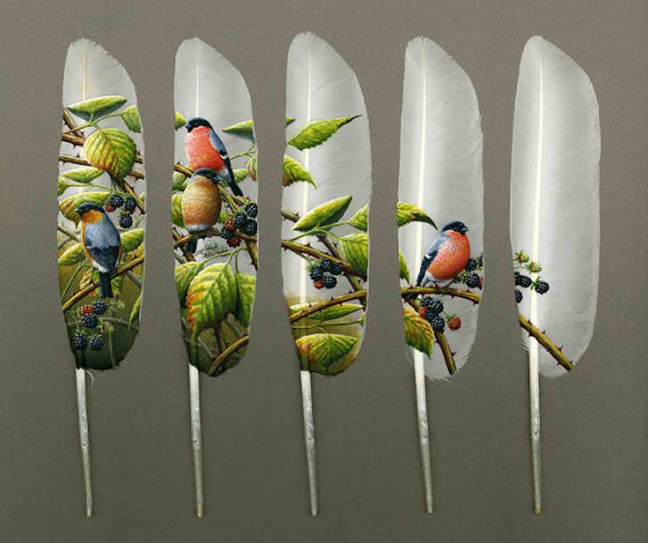 expose-the-light:  Delicate Feather Art by Ian Davie