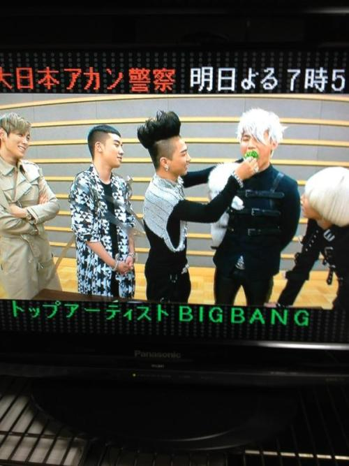 bbspazz:  LOOK AT TABI. LOOK AT HIM.