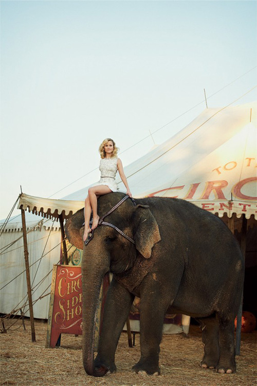 glassgoldsequins:  amazing photo of reese witherspoon (and an elephant).