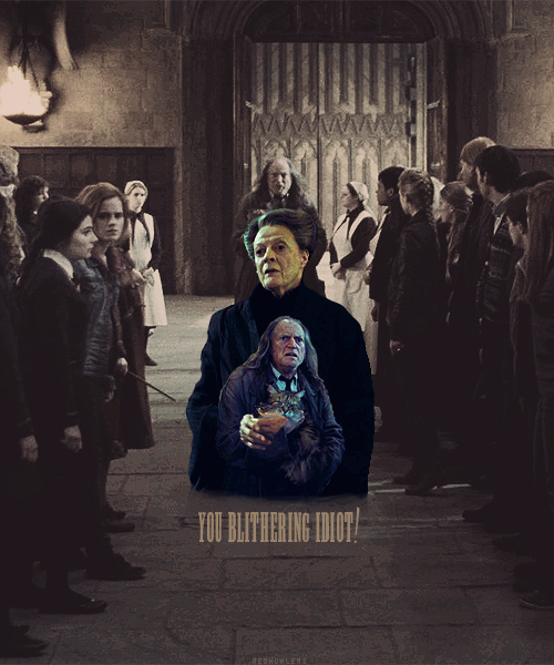 "THE MAGIC BEGINS - A Harry Potter Challenge  » Day Nineteen: Funniest Moment - Argus Filch and Minerva McGonagall""Students out of bed! Students in the corridor!""""They are supposed to be you blithering idiot!"""