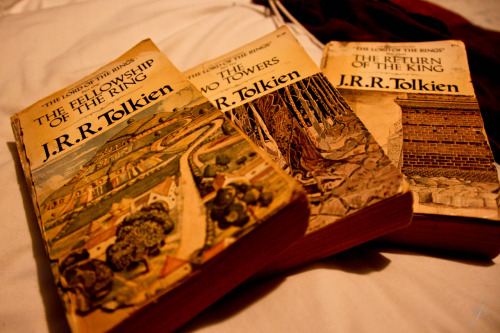 mysteriesofcolor:  Old Books/Favorite Books: Middle Earth  oh…..my……bejeebus…..having the most intense bookgasim I've every had….