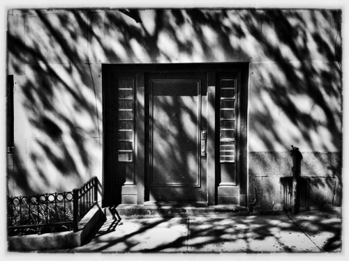 Door of Shadows