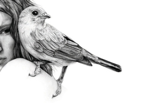 "adayinthelandofnobody:  ""bird in shoulder""  Drawing by Amy Dover"