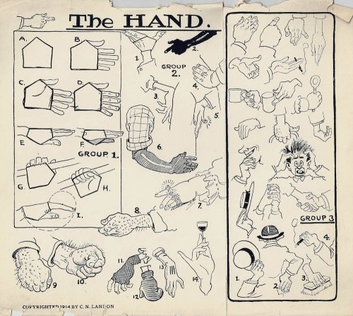 human-proportions:  The Landon Course of Cartooning, How to Draw Hands