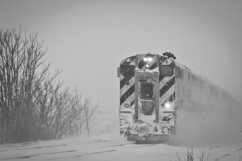 Train through snow (by cmozz)