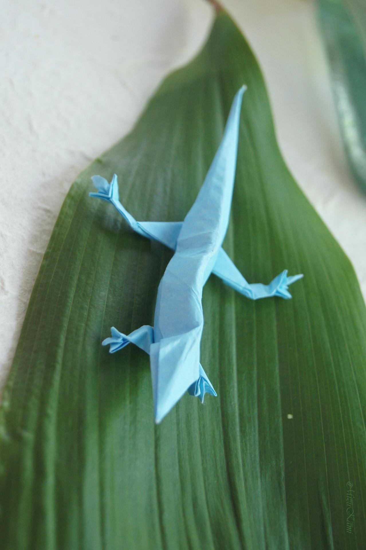 Hawaiian Gecko. Designed by Jodi Fukumoto.