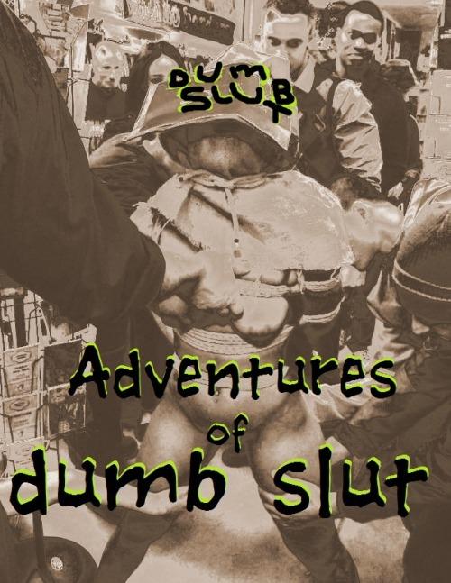 The Adventures  of  A Dumb Slut