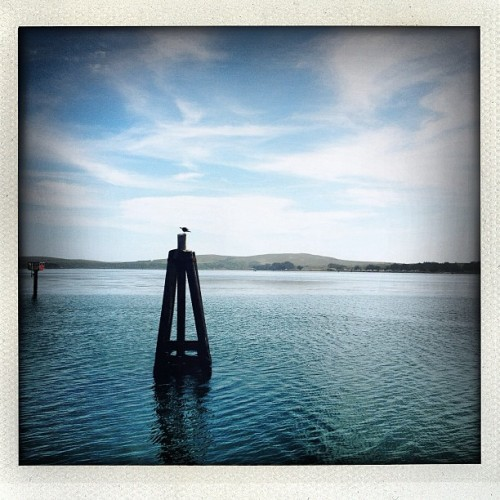 Bodega Bay w/ @mrpollock  (Taken with Instagram)