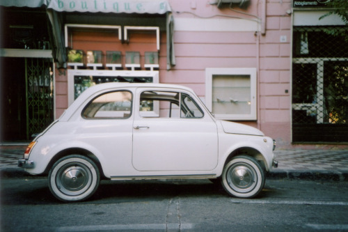 askinganimal:  little car (by chrrristine)