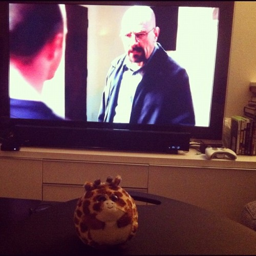Cute giraffe ball loves Breaking Bad :) (Taken with Instagram)