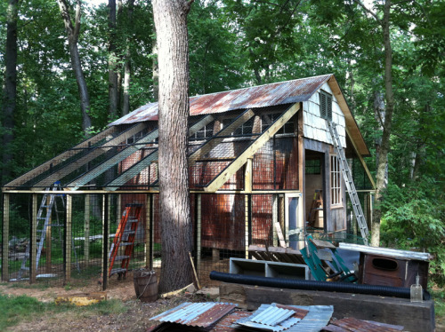 cabinporn:  George Akers and Armin Zomorodi, builders in Princeton, NJ, converted a garage into a coop to accommodate a large flock of chickens and guinea hens. The garage was cut into panels and reassembled. The fencing is display shelves salvaged from a closing video store. Siding is combination of reclaimed corrugated tin, hemlock and 200+ year old cedar shake.  Awesomeness