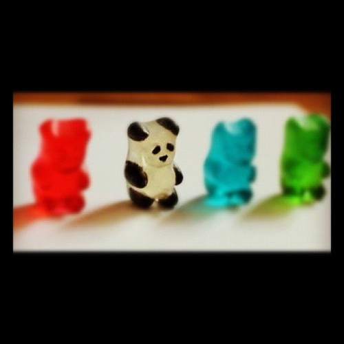 How #cute! The little #panda #gummibear (: i want one lol (Taken with Instagram)
