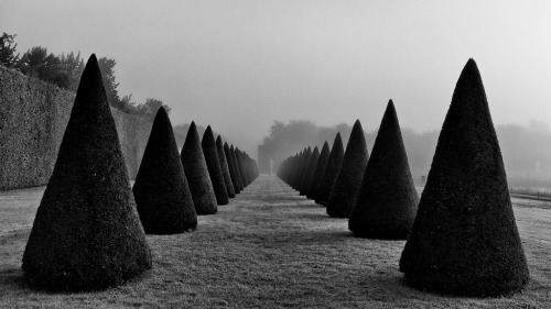 2011-08-30 at 01-46-37 - Versailles (by XtopheC) Leica M9