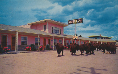 Motel 20 - Moville, Iowa Ph.37455 - On Highway 2- & 140 Moville, Iowa 33 New units all Conditioned - Air Foam mattresses - Tile Bath - Hot Water Heat - TV- Good Restaurant and Service Station Nearby- Wildlife Attractions: Buffalo, Deer and Peacocks. Owned and Operated by Dewey Hebeler.