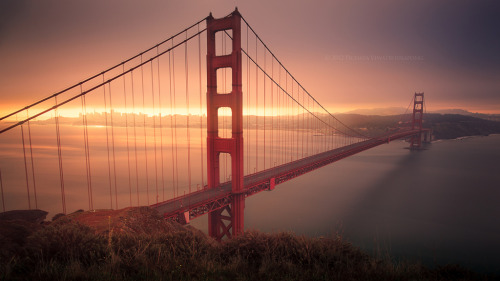 theworldwelivein:  Dark Days are Over | Golden Gate Bridge and San Francisco, California © Zolashine