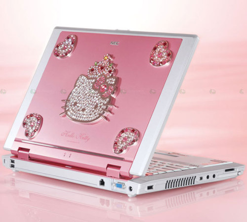 This would be a perfect gift for me so I would have my very own laptop to sleep on!